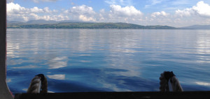 Firth of Clyde Project